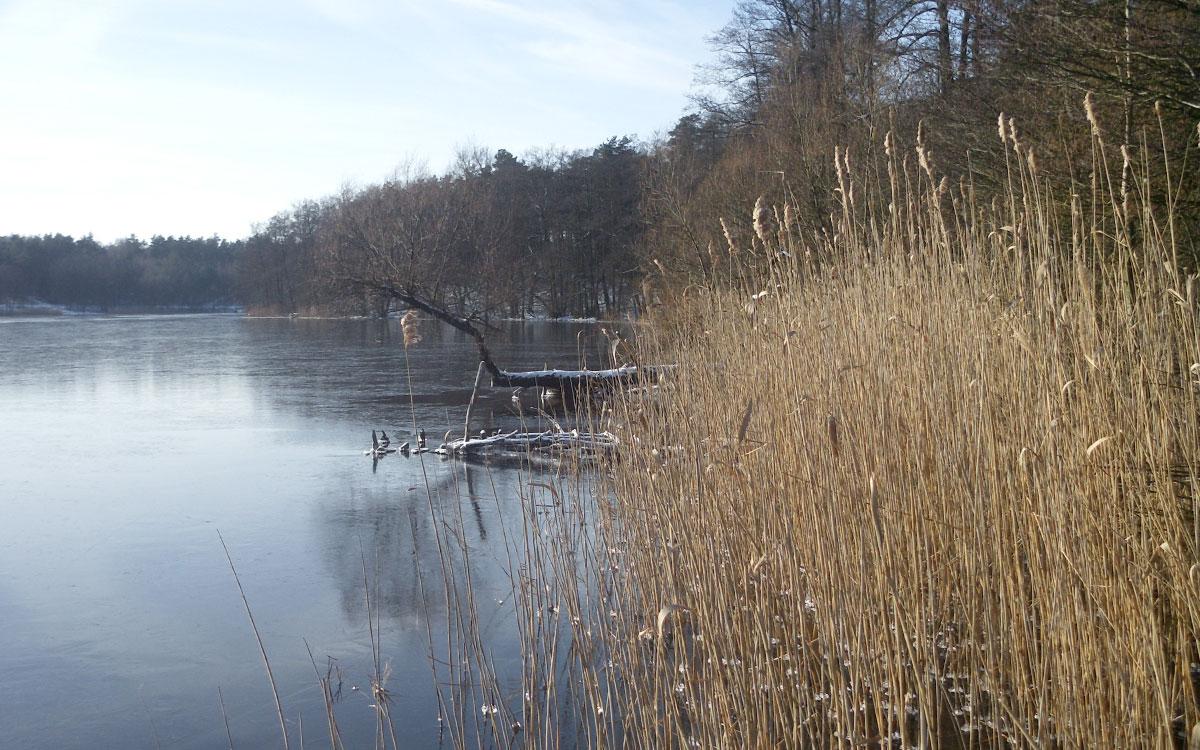 Jezioro Bielińskie